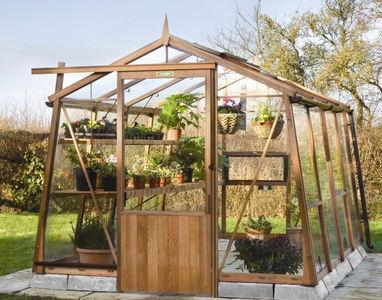 Alton Amateur 8 Cedar Greenhouse 8x10