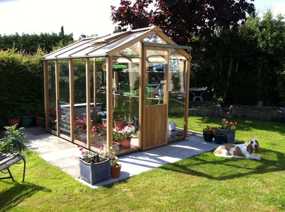 Alton Evolution Six 6x8 Cedar Greenhouse