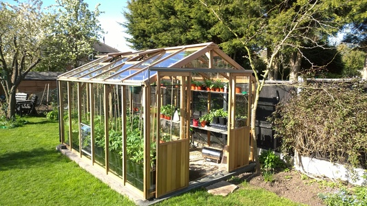 Alton Evolution 8x12 Cedar Greenhouse