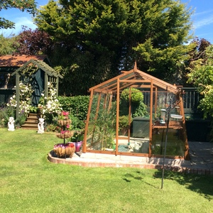 Alton Amateur 8ft x 8ft Cedar Greenhouse