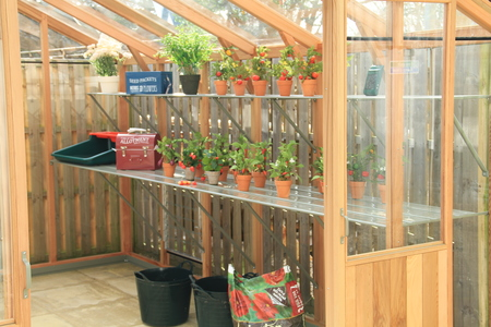 Alton Evolution Ten 10 x 8 Cedar Greenhouse