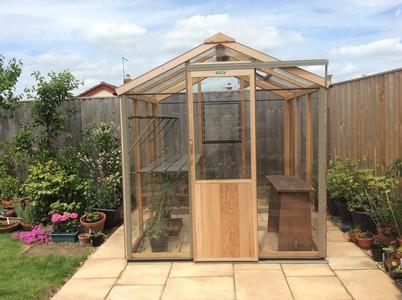 Evolution 6x8 greenhouse