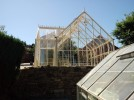 Reicliffe Ivory Greenhouse