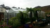 Rosette Reach Old Cottage Green Greenhouse