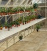 Ranby Ivory Greenhouse