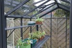 Victorian Rushmoor Anthracite Greenhouse