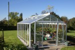 Rosette White Greenhouse