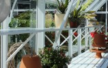 Roedean White Greenhouse